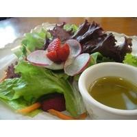 Thumb sugarleaf   salad