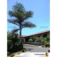 CLUB FILIPINO in San Juan City, Metro Manila - Yellow Pages PH